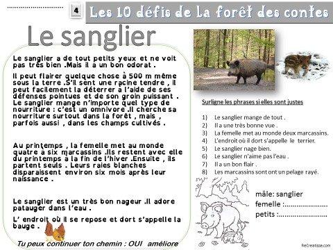 Bien-aimé LECTURE : parcours initiatique - Les 10 défis de la forêt des  UB18