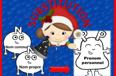 LES PRONOMS : substitutions
