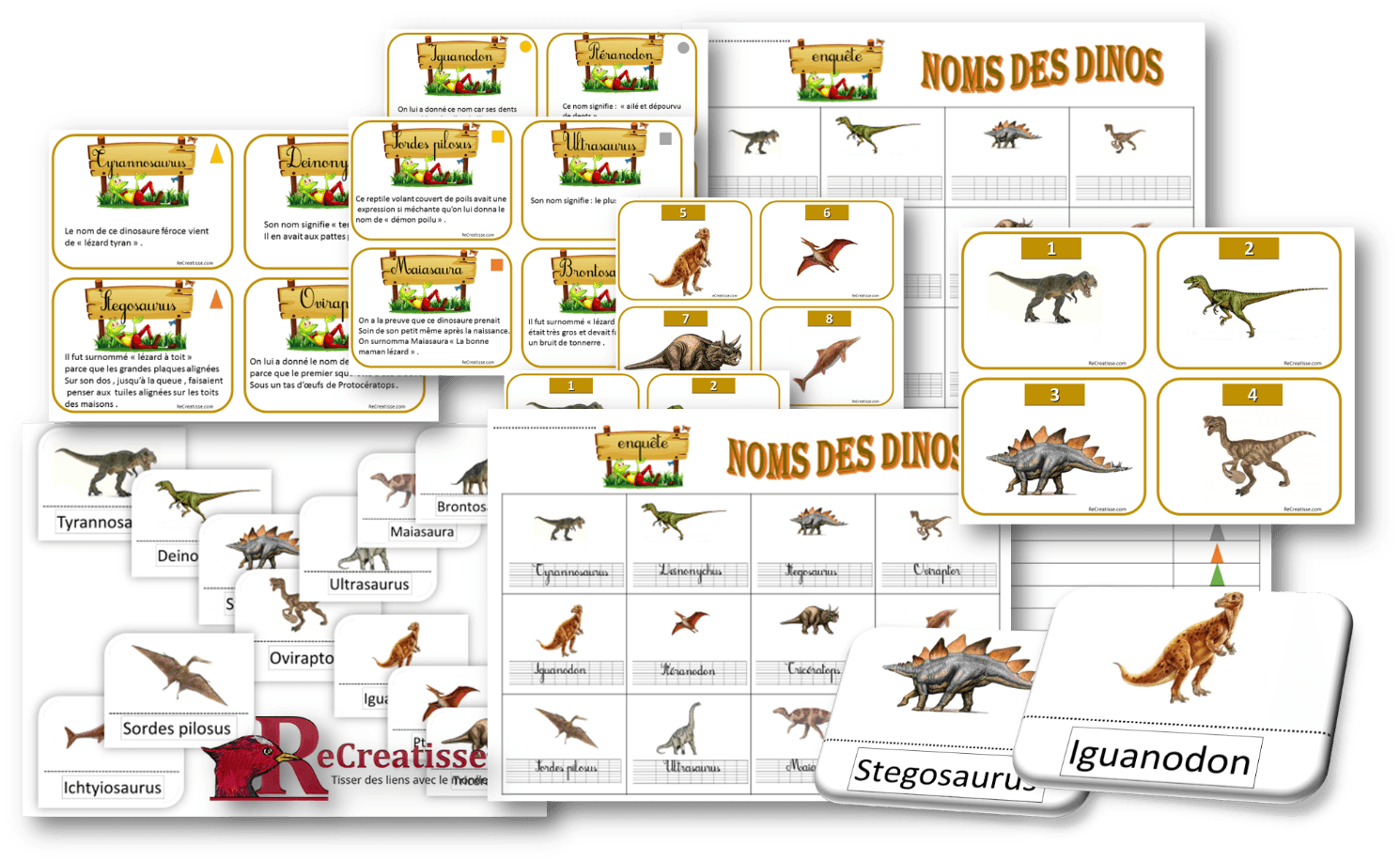 Ateliers lecture autour des dinosaures • ReCreatisse